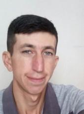 Beytulah, 38, Turkey, Istanbul
