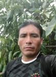 Eliseo, 46  , Lima