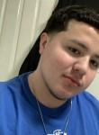 Leo, 20  , The Bronx
