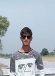 Shahroz, 18  , Kithor