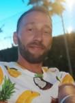 Alexandru, 36  , Civitanova Marche