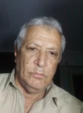 سعيد, 53, Egypt, Dikirnis