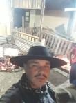 EDSON, 32  , Porto Alegre