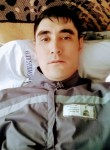 Tima, 31  , Almaty
