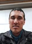 Andrey , 39  , Yekaterinburg