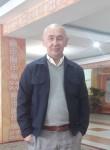 Eset, 18, Tehran