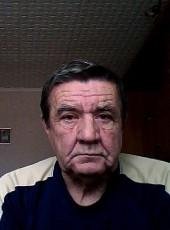 Vlad, 72, Russia, Bobrov