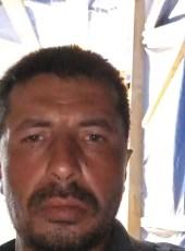 Cafer, 40, Turkey, Seferhisar