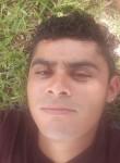 Carlos, 23, Spring