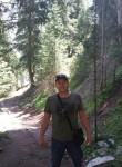 Andrey, 43  , Taraz