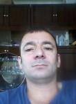 Imya net, 41  , Baki