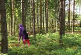 Zhenya, 57 - Финляндия, 12