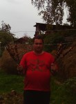 panshin andrey, 34  , Verkhnyaya Pyshma