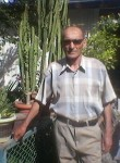 Ibragim, 67  , Baku