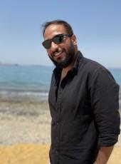 saladin, 32, Egypt, Cairo