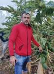 Sergiu, 32  , Ramla