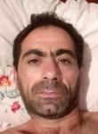 Styopa, 34  , Yerevan