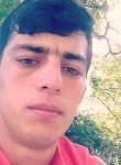 Şamko, 18  , Baku
