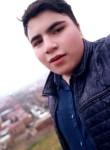 Bushinr, 20  , Yerevan