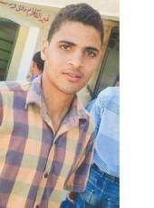 ايمن السنوسي , 22, Egypt, Sidi Salim