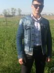 shahrom, 22, Krasnoyarsk