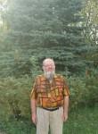 Грустныйлосяра, 65 лет, Москва