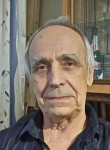 Viktor, 79  , Budennovsk