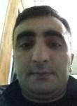 Farid, 33  , Baku