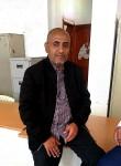 علي, 50  , Sanaa
