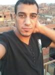 عمرو, 35, Cairo