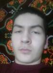 Oybek , 20  , Beruniy