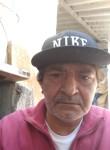 Elaiu, 53  , Sao Paulo