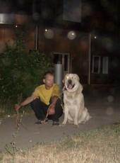 Dmitriy, 38, Russia, Tolyatti