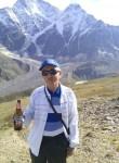 soltan, 62  , Dugulubgey