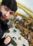 Vasya, 18  , Buzau