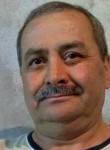 Adamyilmaz, 57  , Ulubey (Ordu)