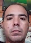 Evanir, 37, Viamao