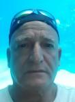 avi אלימלך, 54  , Eilat