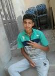 حسن , 18  , Alexandria