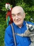 Виталий Василь, 68 лет, Краснодар