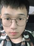一只猪, 28  , Nanchong
