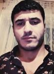 Epi, 28, Shamkhor