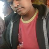 rajesh mehar, 28  , Gadarwara
