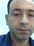 Mustafa, 36  , Aleppo