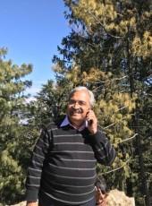 Dinesh Khanna, 65, India, Amritsar