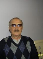 viktor, 71, Russia, Saint Petersburg