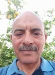 Daly, 60  , Sfax
