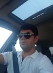 Alim, 31  , Tashkent