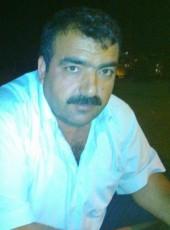 abdulkadir olğaç, 44, Turkey, Sapanca