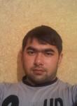 dadish, 28  , Proletarsk